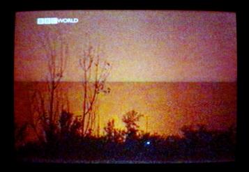1 TV WARS 2000-2006 57x80cm