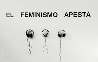 el-feminismo-apesta