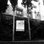 lamosa-s